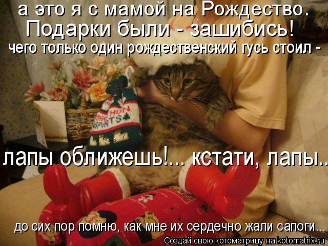 Котоматрица: а это я с мамой на Рождество.  Подарки были - зашибись! чего только один рождественский гусь стоил - лапы оближешь!... кстати, лапы... до сих пор