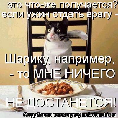 Котоматрица: это что-же получается? если ужин отдать врагу - Шарику, например - то МНЕ НИЧЕГО НЕ ДОСТАНЕТСЯ! если ужин отдать врагу - Шарику, например - то М