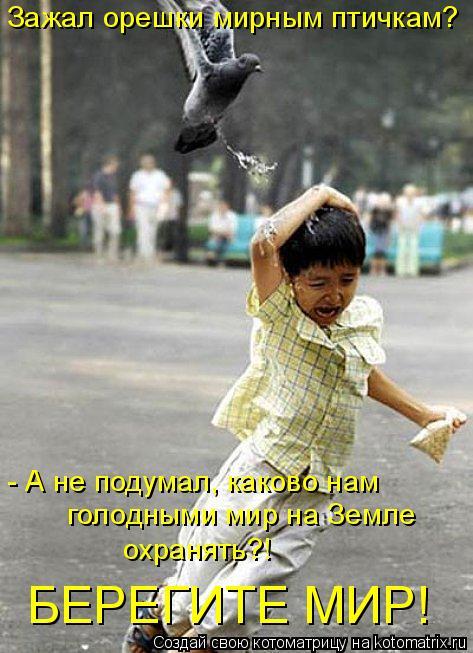 Котоматрица: голодными мир на Земле  охранять?! БЕРЕГИТЕ МИР! Зажал орешки мирным птичкам? - А не подумал, каково нам
