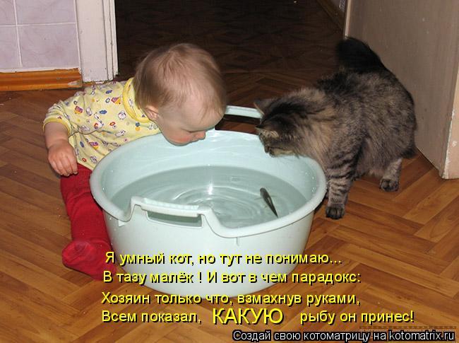 Хозяин только что, взмахнув руками, Я умный кот, но тут не понимаю... Всем показал,                       рыбу он принес! КАКУЮ В тазу малёк ! И вот в чем парадокс:
