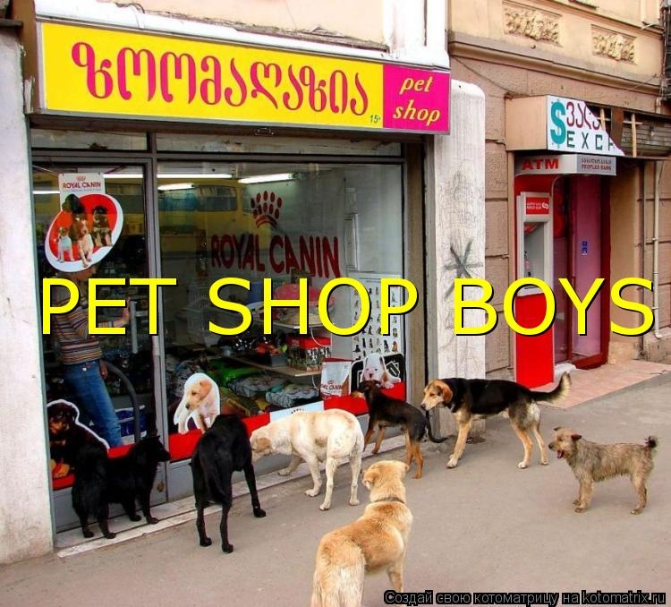 Котоматрица: PET SHOP BOYS