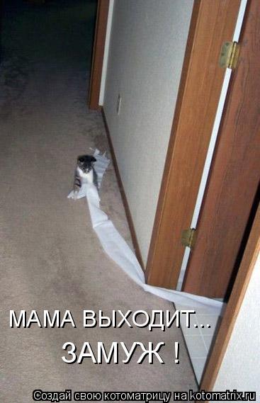 Котоматрица: МАМА ВЫХОДИТ...  ЗАМУЖ !