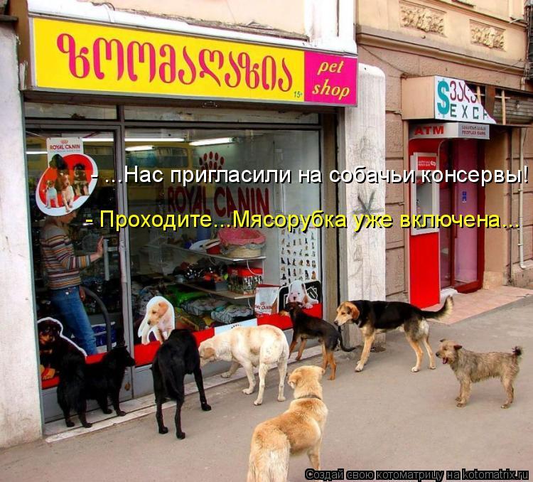 Котоматрица: - ...Нас пригласили на собачьи консервы! - Проходите...Мясорубка уже включена...