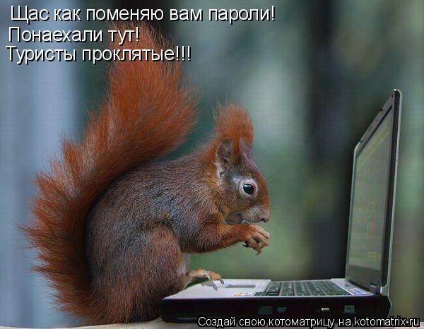 Котоматрица: Щас как поменяю вам пароли! Понаехали тут! Туристы проклятые!!!
