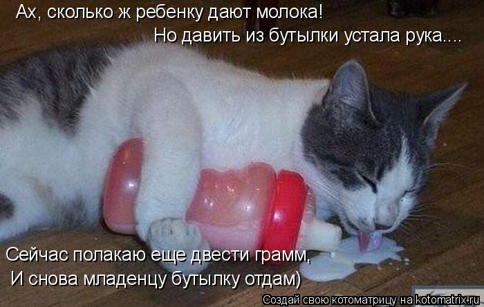 Котоматрица: Ах, сколько ж ребенку дают молока! Но давить из бутылки устала рука.... Сейчас полакаю еще двести грамм, И снова младенцу бутылку отдам)