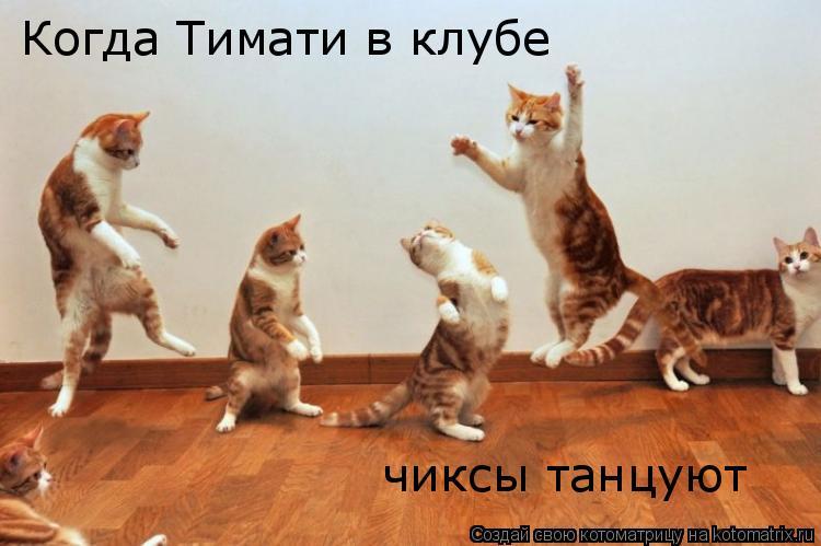 Котоматрица: Когда Тимати в клубе чиксы танцуют