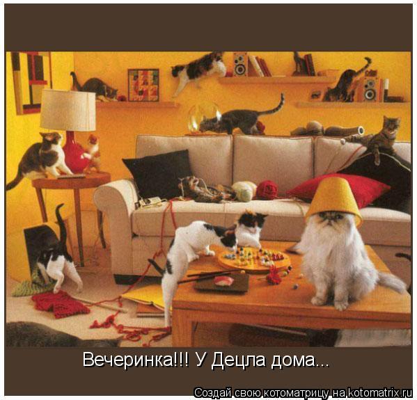 Котоматрица: Вечеринка!!! У Децла дома...