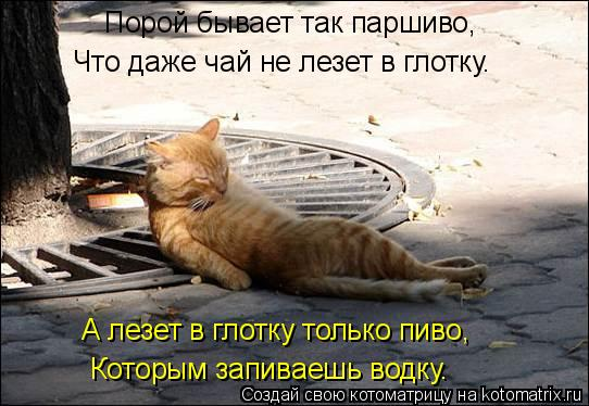 Котоматрица: Порой бывает так паршиво, Что даже чай не лезет в глотку. А лезет в глотку только пиво, Которым запиваешь водку.
