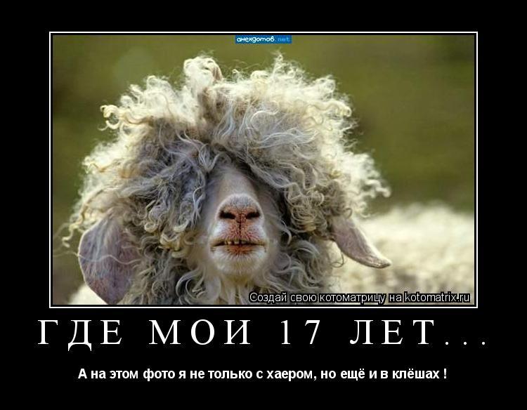 Котоматрица: Где мои 17 лет... А на этом фото я не только с хаером, но ещё и в клёшах !