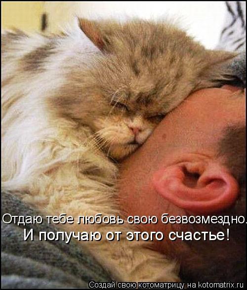 Котоматрица: Отдаю тебе любовь свою безвозмездно. И получаю от этого счастье!