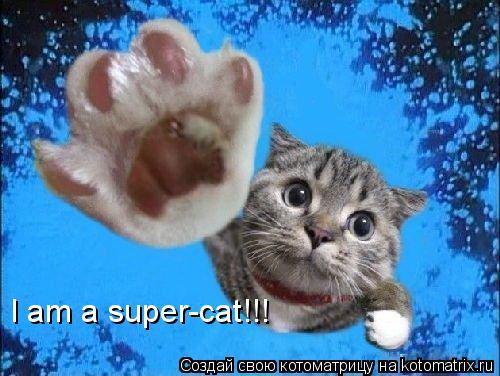 Котоматрица: I am a super-cat!!!