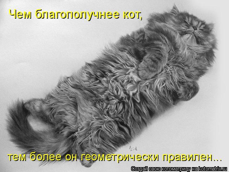 Котоматрица: Чем благополучнее кот,  тем более он геометрически правилен...