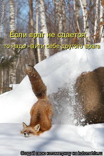 Котоматрица: Если враг не сдается,  то надо найти себе другого врага
