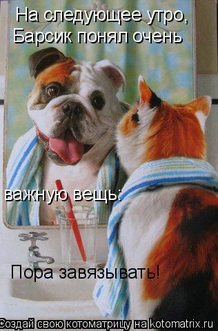 Котоматрица: На следующее утро, Барсик понял очень важную вещь: Пора завязывать!
