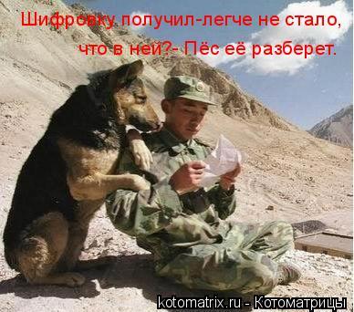 Котоматрица: Шифровку получил-легче не стало, что в ней?- Пёс её разберет.