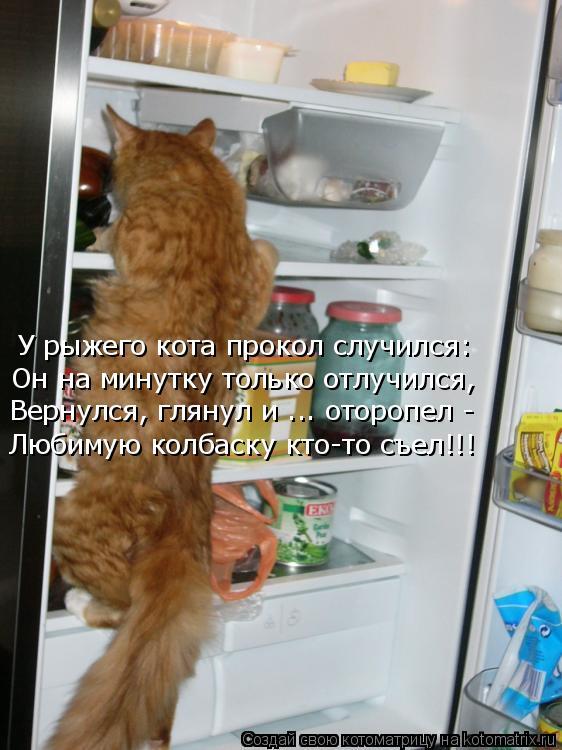 Котоматрица: У рыжего кота прокол случился: Он на минутку только отлучился, Вернулся, глянул и ... оторопел - Любимую колбаску кто-то съел!!!
