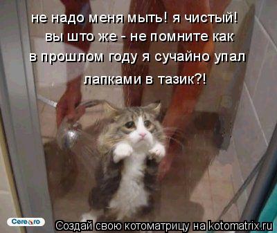 Котоматрица: не надо меня мыть! я чистый! вы што же - не помните как  в прошлом году я сучайно упал лапками в тазик?!