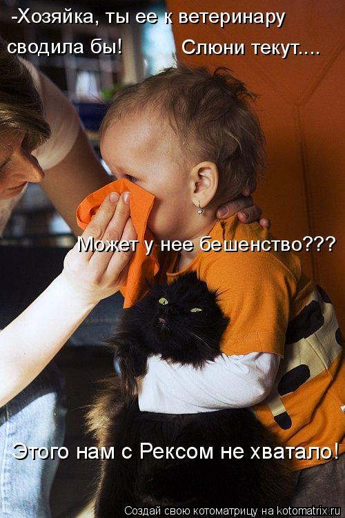 Котоматрица: -Хозяйка, ты ее к ветеринару Может у нее бешенство??? сводила бы! Слюни текут.... Этого нам с Рексом не хватало!