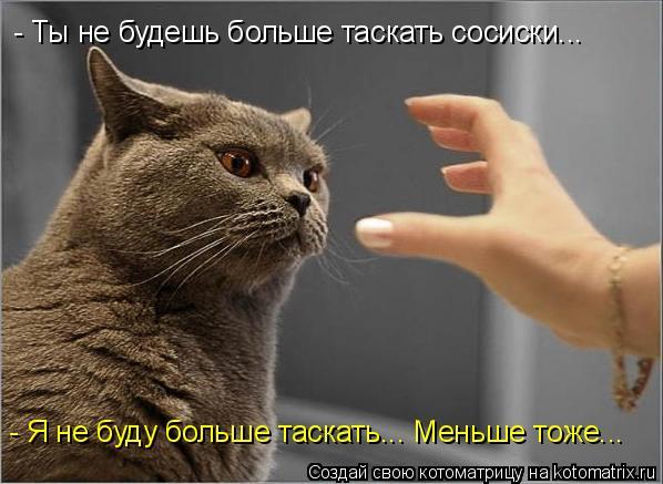Котоматрица: - Ты не будешь больше таскать сосиски... - Я не буду больше таскать... Меньше тоже...
