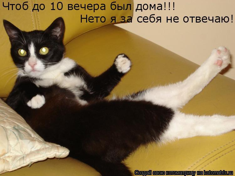 Котоматрица: Чтоб до 10 вечера был дома!!!  Нето я за себя не отвечаю!
