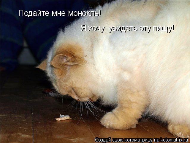 Котоматрица: Подайте мне монокль! Я хочу  увидеть эту пищу!
