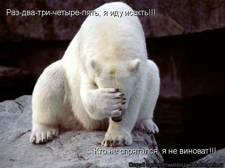 Котоматрица: Раз-два-три-четыре-пять, я иду исакть!!! Кто не спрятался, я не виноват!!!