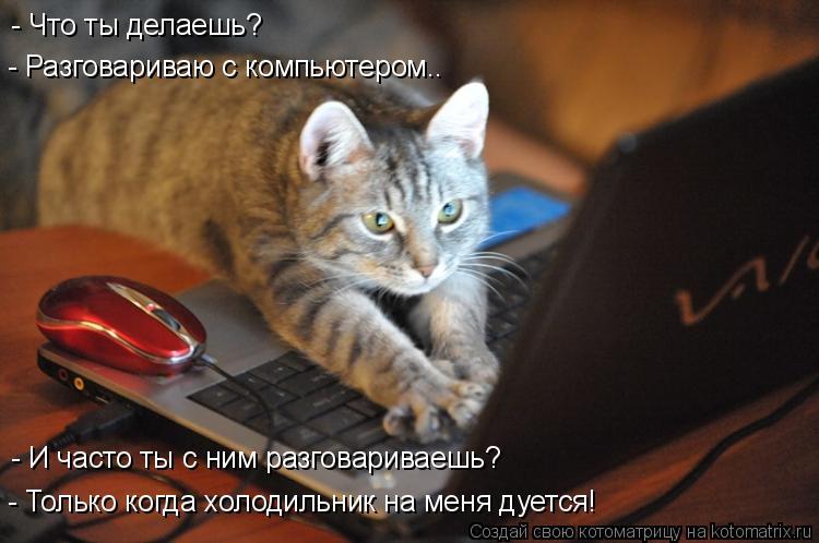 Котоматрица: - Что ты делаешь? - Разговариваю с компьютером.. - И часто ты с ним разговариваешь? - Только когда холодильник на меня дуется!