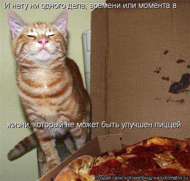 Котоматрица: И нету ни одного дела, времени или момента в жизни, который не может быть улучшен пиццей.