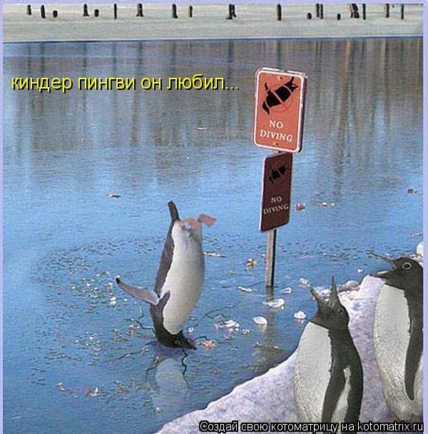Котоматрица: киндер пингви он любил...