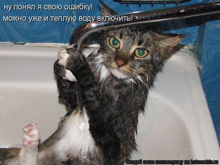Котоматрица: ну понял я свою ошибку! можно уже и теплую воду включить!