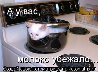 Котоматрица: А у вас, молоко убежало....