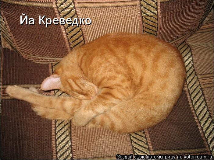 Котоматрица: Йа Креведко