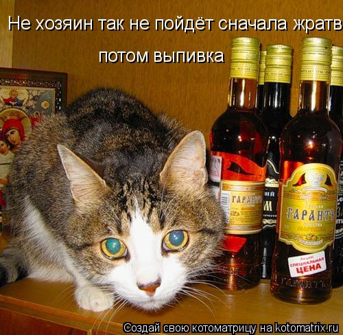 Котоматрица: Не хозяин так не пойдёт сначала жратва Не хозяин так не пойдёт сначала жратва потом выпивка