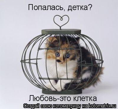Котоматрица: Попалась, детка? Любовь-это клетка