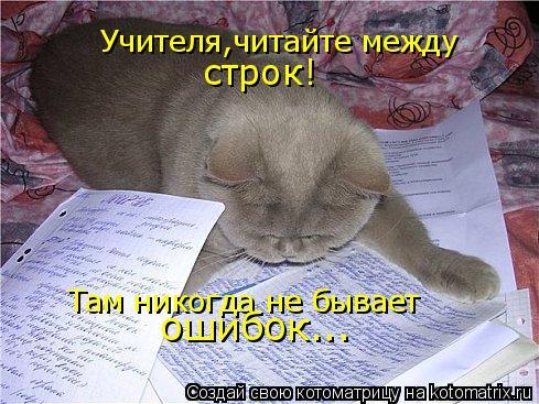 Котоматрица: Учителя,читайте между строк! Там никогда не бывает ошибок...