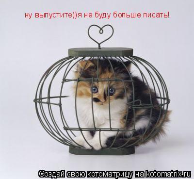 Котоматрица: ну выпустите))я не буду больше писать!