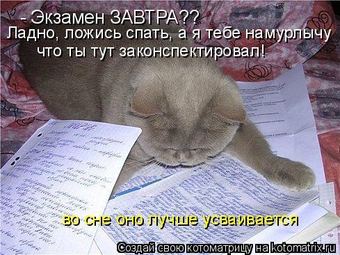 Котоматрица: - Экзамен ЗАВТРА?? Ладно, ложись спать, а я тебе намурлычу что ты тут законспектировал! во сне оно лучше усваивается