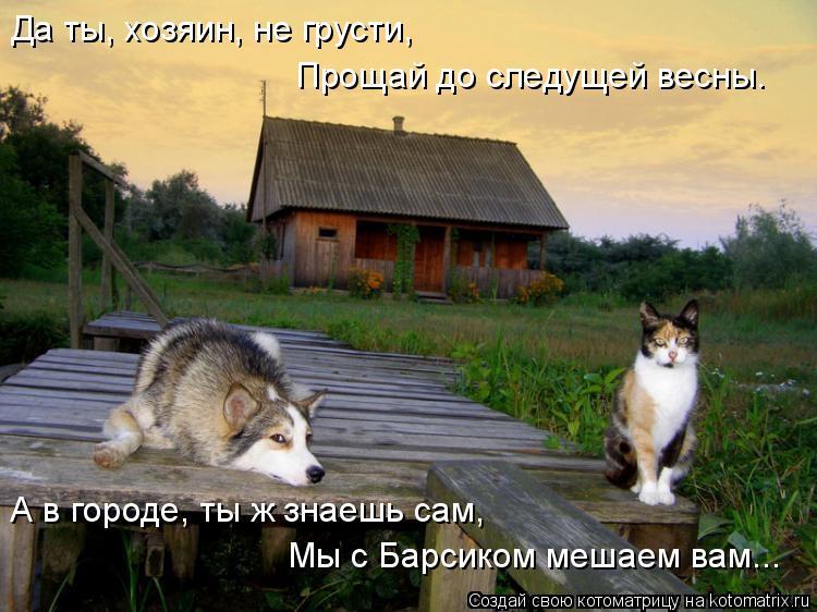Котоматрица: Да ты, хозяин, не грусти, Прощай до следущей весны. Да ты, хозяин, не грусти, А в городе, ты ж знаешь сам, Мы с Барсиком мешаем вам...