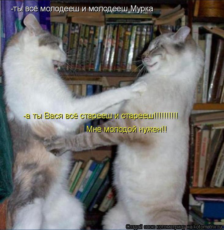 Котоматрица: -ты всё молодееш и молодееш Мурка -а ты Вася всё старееш и старееш!!!!!!!!!! Мне молодой нужен!!