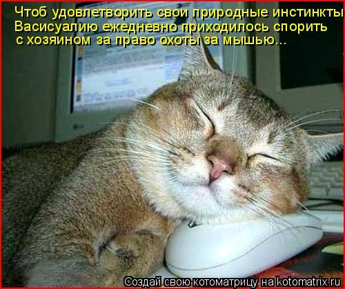 Котоматрица: Чтоб удовлетворить свои природные инстинкты Васисуалию ежедневно приходилось спорить с хозяином за право охоты за мышью...