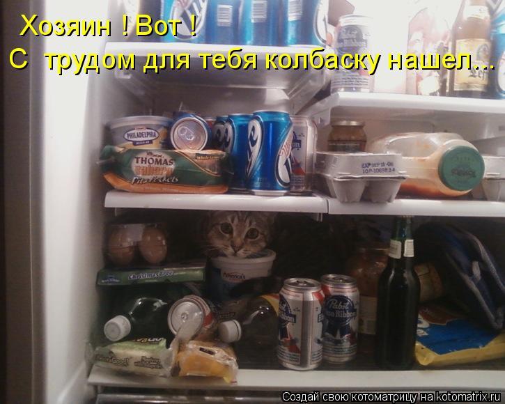 Котоматрица: Хозяин ! Вот ! С  трудом для тебя колбаску нашел...