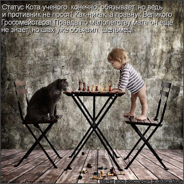 Котоматрица: Статус Кота ученого, конечно, обязывает, но ведь  и противник не прост! Как-никак, а правнук Великого  Гроссмейстера! Правда по малолетству м