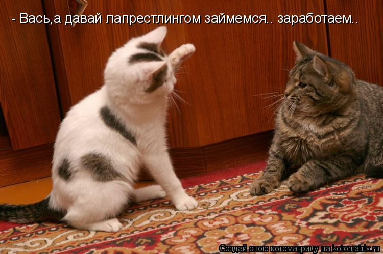 Котоматрица: - Вась,а давай лапрестлингом займемся.. заработаем..