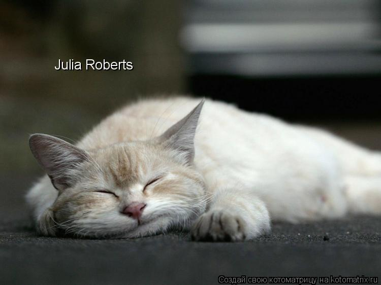Котоматрица: Julia Roberts