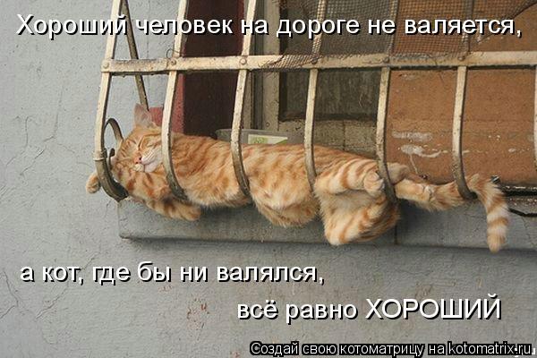 Котоматрица: Хороший человек на дороге не валяется, а кот, где бы ни валялся,  всё равно ХОРОШИЙ
