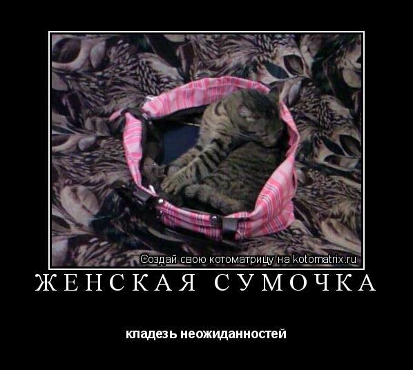 Котоматрица: женская сумочка кладезь неожиданностей
