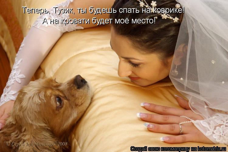 Котоматрица: Теперь, Тузик, ты будешь спать на коврике! А на кровати будет моё место!