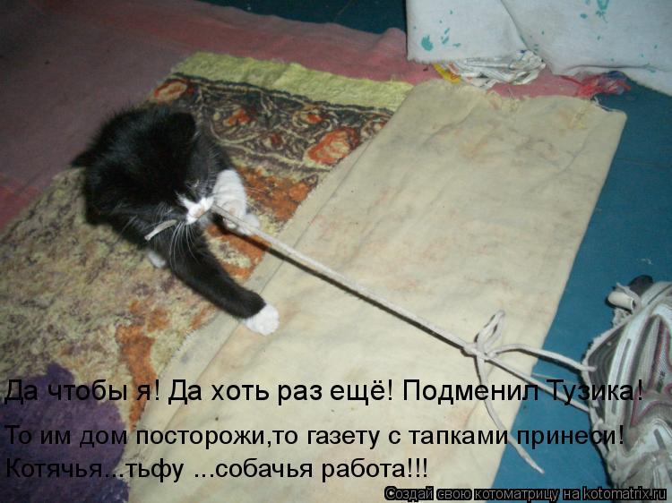 Котоматрица: Да чтобы я! Да хоть раз ещё! Подменил Тузика! То им дом посторожи,то газету с тапками принеси! Котячья...тьфу ...собачья работа!!!