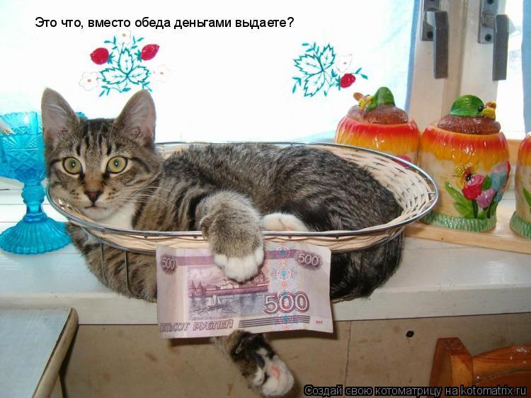 Котоматрица: Это что, вместо обеда деньгами выдаете?