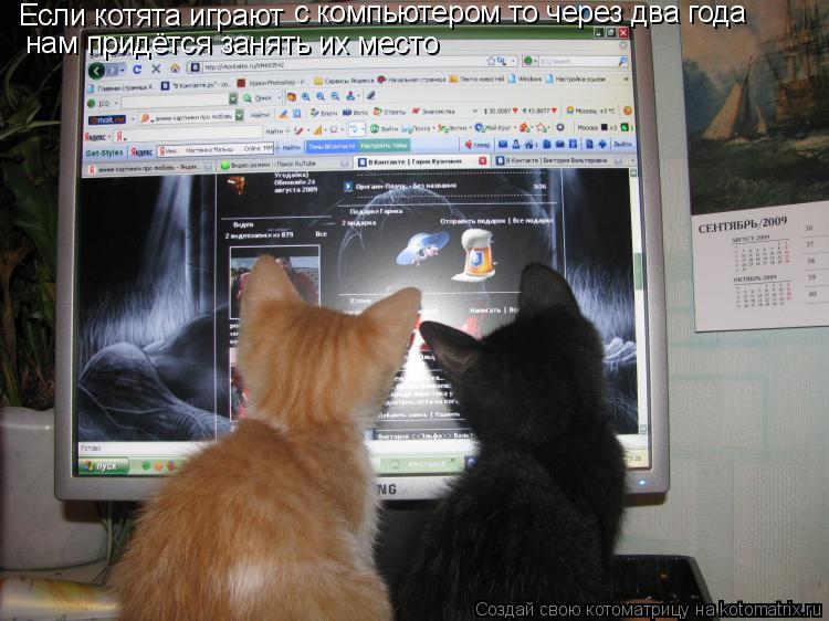 Котоматрица: Если котята играют с компьютером то через два года нам придётся занять их место
